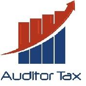 Asesorías Tributarias, Auditorias